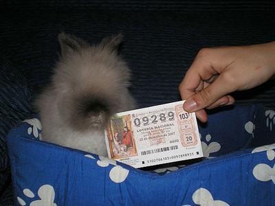 biglietto-lotteria-spagnola.jpg