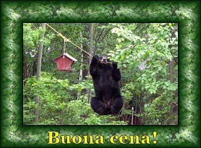 orso-buona-cena.jpg
