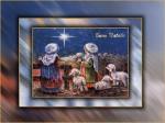 card-pastori