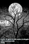 ombre-di-alberipensiero