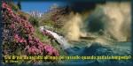 ruscello-tempesta-cartolina