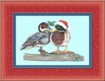 duck-frame