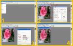 collage dissolvenze rosa 1