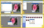 collage dissolvenze rosa 2