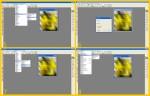 collage palla quad 2