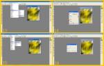 collage palla quad 4