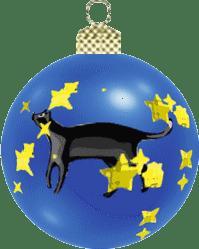 palla gatto