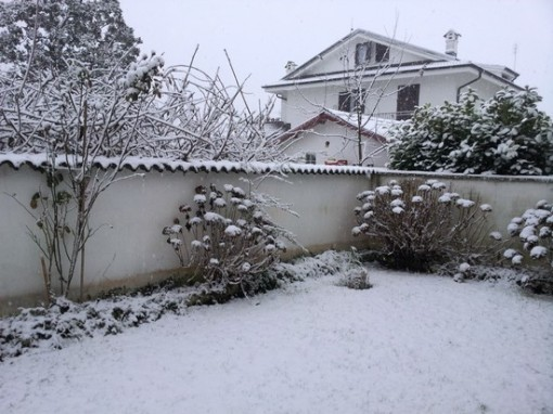 nevica-1